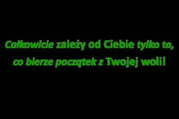 Ośrodek Terapii Strefa Trzeźwości leczenie alkoholizmu, odwyk alkoholowy Kraków
